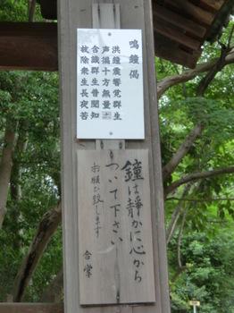 寺35.JPG